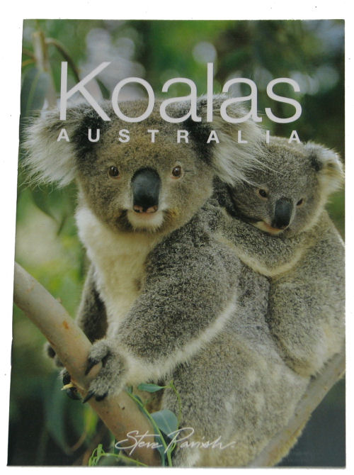 Book: Koalas Little Gift Book